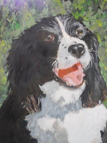 Oil Pet Paintings by Larry Gekiere