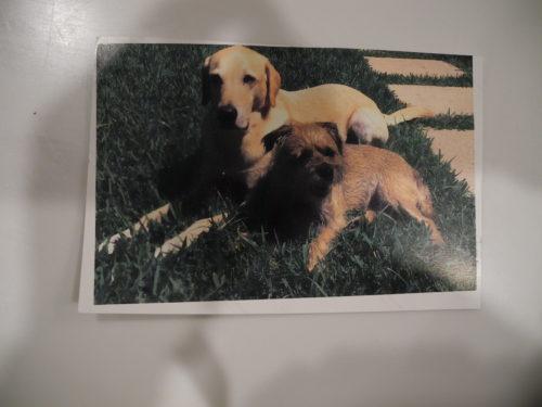 Rudy and Gloria